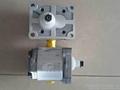 萨澳齿轮泵 2