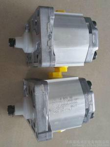 萨澳齿轮泵 1