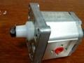 进口齿轮泵 1