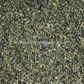 china green tea factory supply chunmee tea FLECHA tea 4
