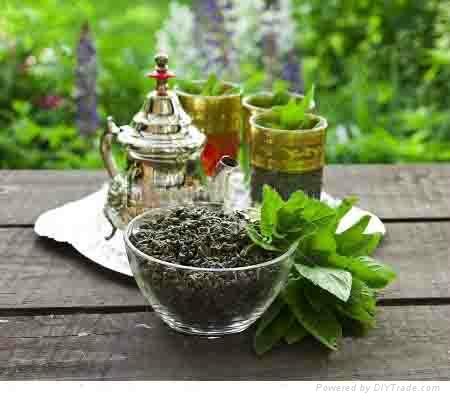 chunmee green tea for Africa 1