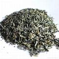 chunmee green tea for Africa 4