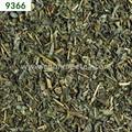 China green tea for Tajikistan 3008 9366 9367 9368 9369  9371 3
