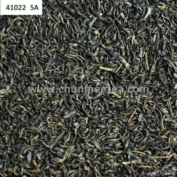 wholesale china green tea RAHA tea 1
