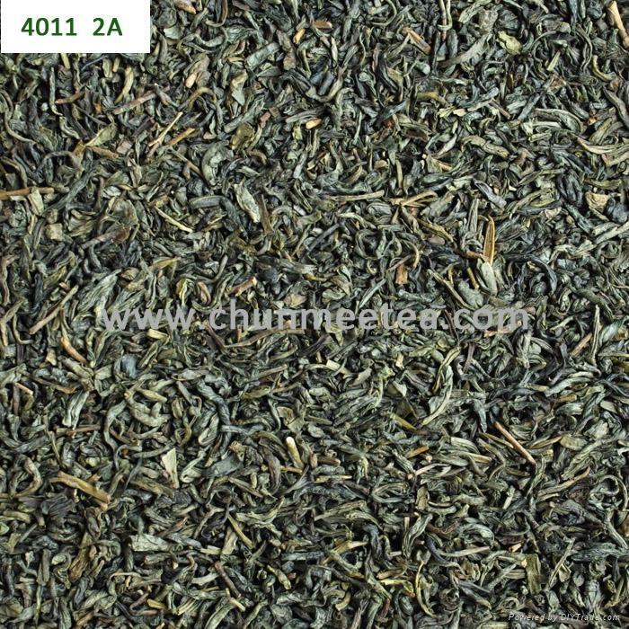 wholesale china green tea RAHA tea 3