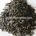 Abeer tea chunmee tea for Uzbekistan 4