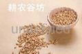 現磨豆漿原料批發/耕農谷坊豆漿包/低溫烘焙/花生豆漿/小袋裝 2