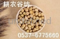 現磨豆漿原料批發/耕農谷坊豆漿包/低溫烘焙/花生豆漿/小袋裝 3
