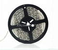 72W Waterproof LED Strip Lights Rope Light SMD5050 12V Five Meters 2