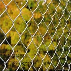 环保节能热镀锌球场护栏网