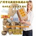 DHL国际快递代理 3