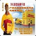 DHL国际快递代理 4