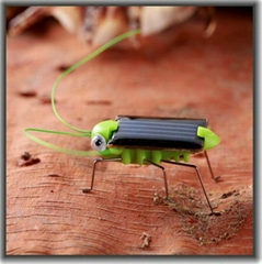 Green Energy Intellectual Solar Toy Kit Insect Locust grasshopper Christmas gift