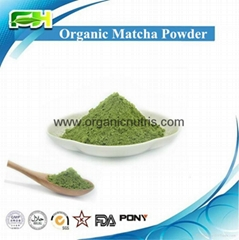 EOS & USDA Certified Organic Matcha Powder