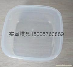 各种塑料快餐盒模具