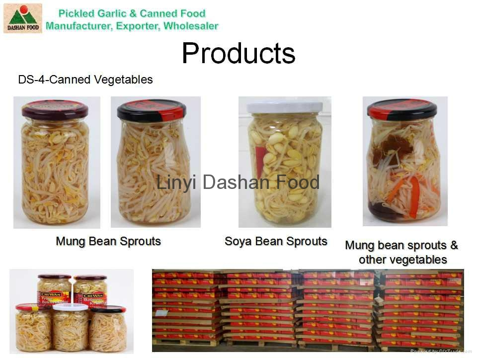 Marinated bean sprouts 2
