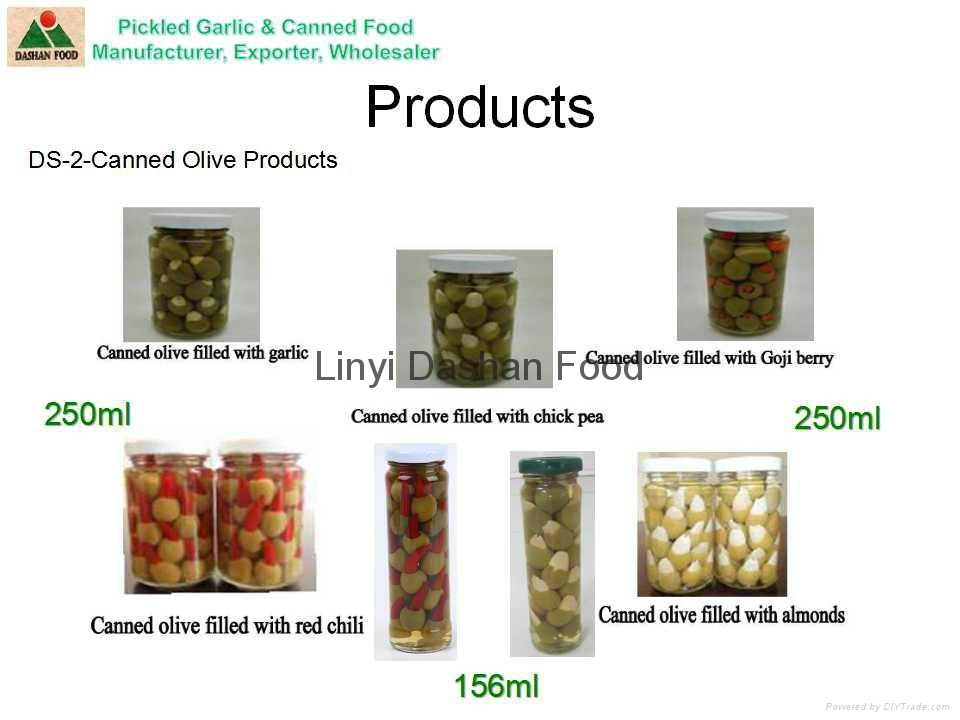 Canned Vegetables 4