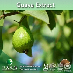 Food and Beverage Industry Guava Juice Concentrate 66 Brix