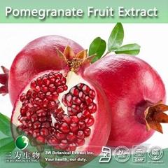 High Quality Pomegranate Extract Ellagic Acid