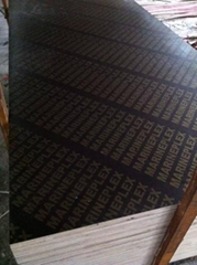 GOOD QUALITY melamine glue brown film faced plywood