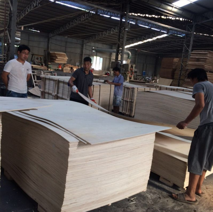Poplar Plywood High Quality for Packing Pallet 8mmx1220X2440 2