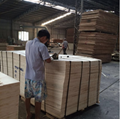 Poplar Plywood High Quality for Packing Pallet 8mmx1220X2440 3