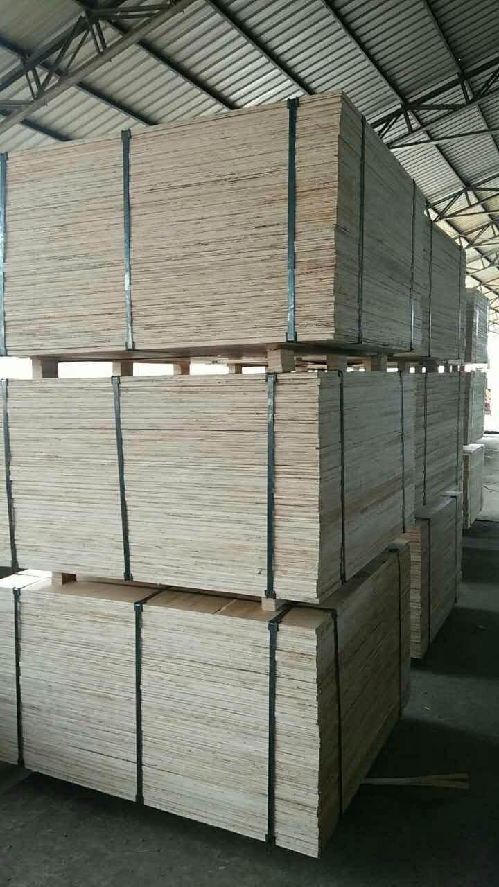 Cheap price 1220X2440mm Packing Plywood  4