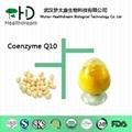 Coenzyme Q10   20%, 99%