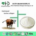 Supply Bovine Collagen Powder 1