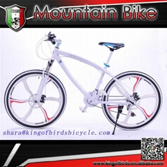 26 inch bicycle with 21 speed MTB mountain bike magnesium alloy wheel