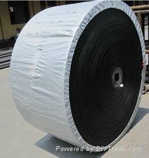 CC conveyor belt