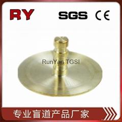 brass studs/bronze studs