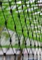 Stainless steel wire mesh for children's playground