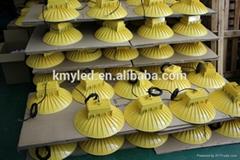 High power LED garden light 50w 60w 80w 100w 120w