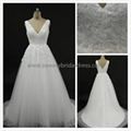 Aline V-Neck Lace & Tulle Wedding Dress