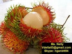 Vietnamese rambutan