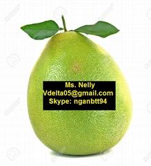 Vietnamese grapefruit (pomelo)