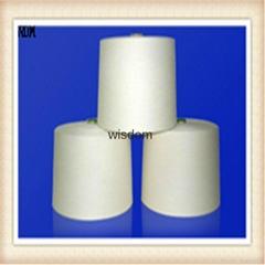 kapok cotton  20/80 blended yarn for socks