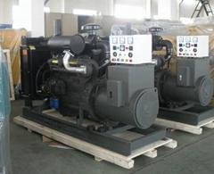 Weichia 20kw diesel gene