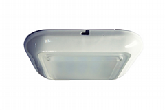 LED lights for utilities