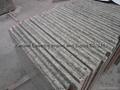 """Giallo Santa Cecilia Granite Countertop Kitchentop 96""""x26"""" 4"""