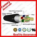 Stranded Loose Tube Flame Retardant cable Optic fiber cable GYFTZA APL 2