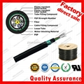 GYFTZY53 underground optical fiber cable for network FRP Dual armored communicat 1