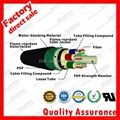 GYFTZY53 underground optical fiber cable for network FRP Dual armored communicat 3