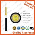 GJA Waterproof pigtail cable 12 cores indoor optical cable