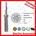 ZION Overhead Ground Wire OPGW Fiber