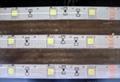 LED灯条封装胶 4