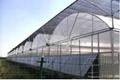 Greenhouse Cooling Alumnium Plastic Net