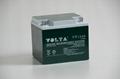 廠商供應鉛酸蓄電池 2