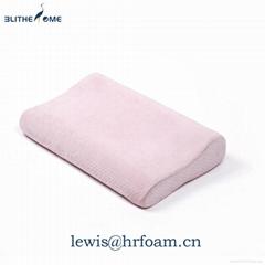 供应博裕迪慢回弹 零压力太空记忆枕 颈枕记忆枕 保健枕